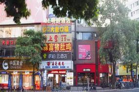 如家云系列-廣州從化區客運地鐵站派柏·云酒店(內賓)